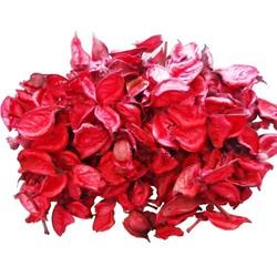 - Kuru Gül Yaprağı Kırmızı 100 Gr