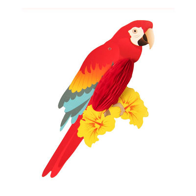 Papağan Petek Süs 3 'lü Set